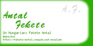antal fekete business card